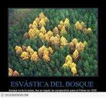 esvastica_4